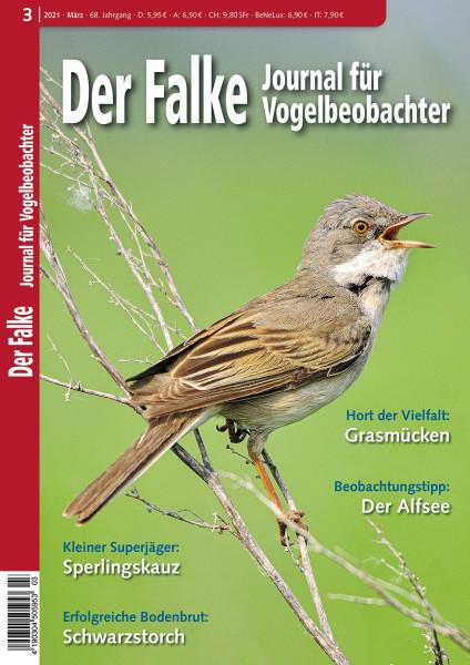 Der Falke, Journal für Vogelbeobachter